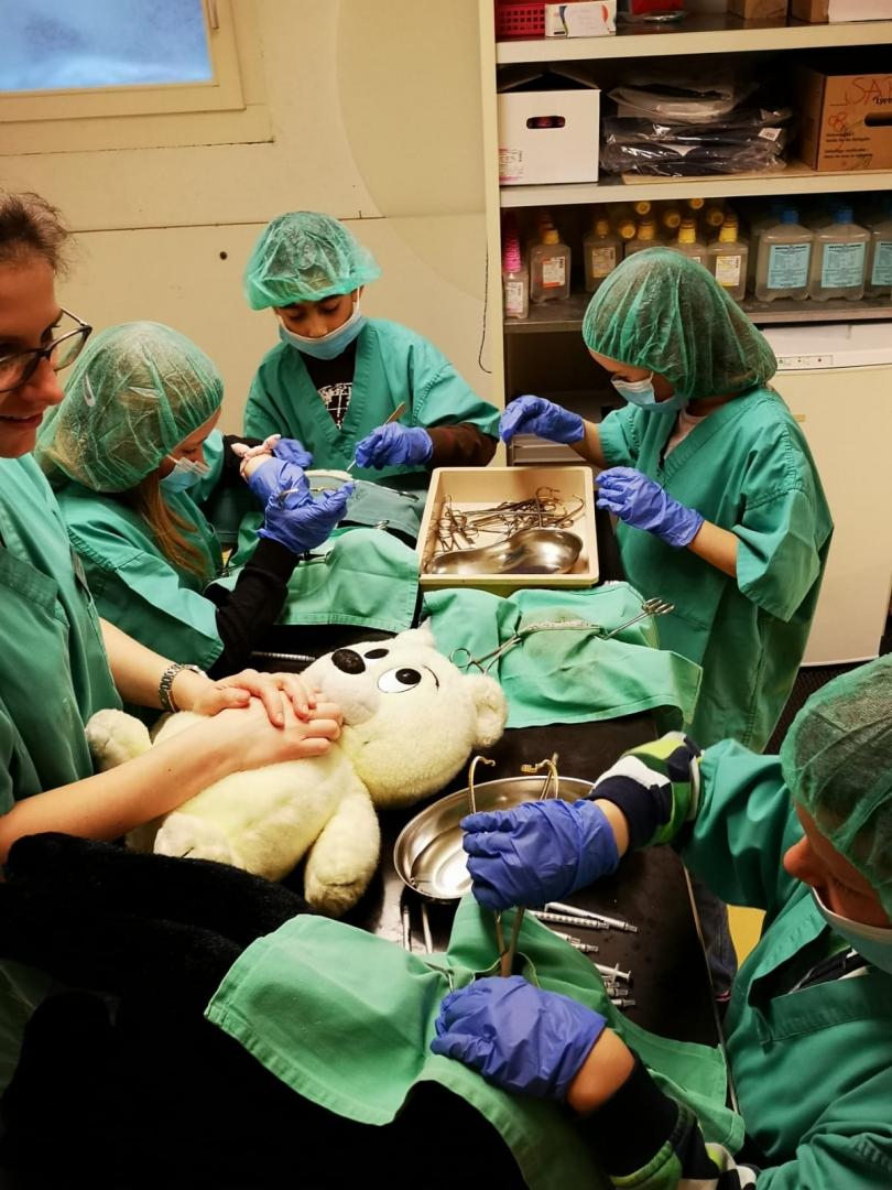 Schüler in der Tierpraxis